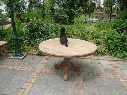 Teak-Tisch rund  Ø 140 cm altes Holz - Bild 14